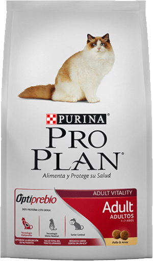 Pro Plan  Adult Cat