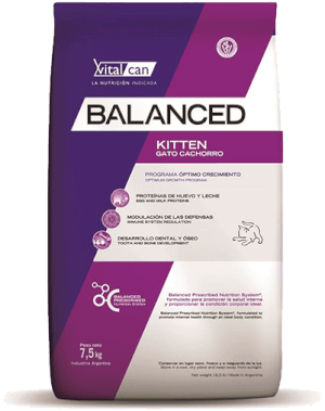 Vital Can  Balanced Gato Kitten