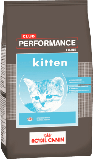 Club Performance  Cat Kitten (Gato Cachorro)