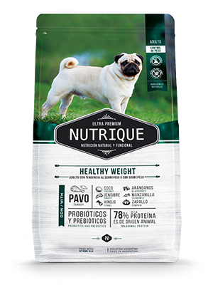 Nutrique Healthy Weight Dog