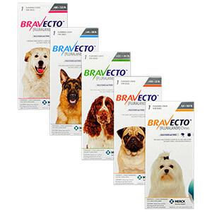 MSD Bravecto  Bravecto Comprimidos Masticables Antipulgas Perros