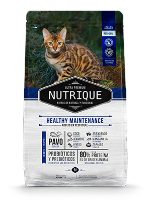 Nutrique Cat Healthy Maintenance