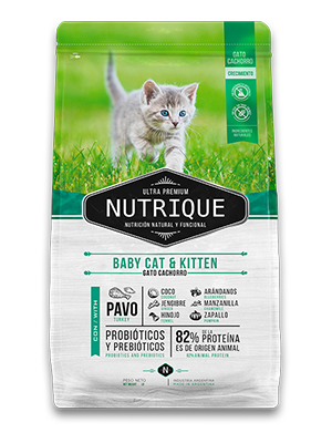 Nutrique Cat Baby & Kitten