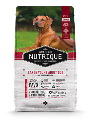 Nutrique Young Adult Large