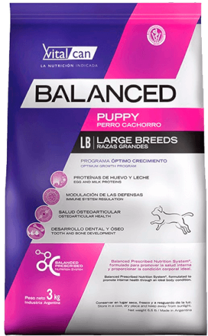 Vital Can  Balanced Cachorro Raza Grande