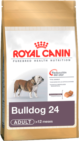 Royal Canin  Bulldog 24 Ingles