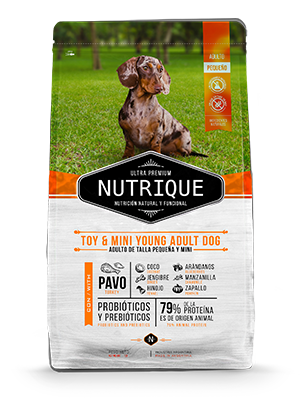 Nutrique Young Adult Mini & Toy